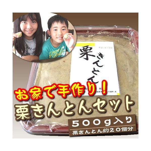お家で手作り!栗きんとんセット(500g)