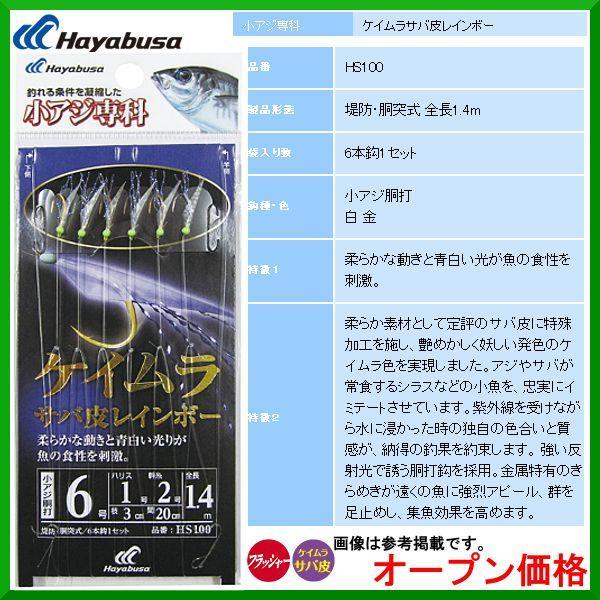 ハヤブサ  HS100  小アジ専科  ケイムラサバ皮レインボー 6本鈎  8号-2-4  ( 10個セット )  サビキ 堤防・岸釣り  ( 定形外可 )|
