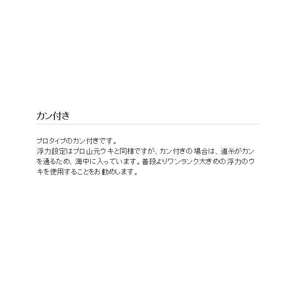 ≪'18年12月新商品!≫ 山元工房 プロ山元ウキ カン付き R(レギュラー) オレンジ G5