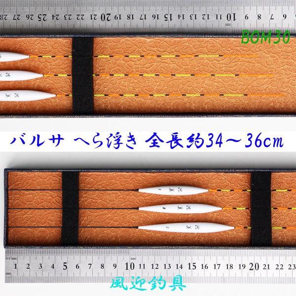 IMG 6769 (1)
