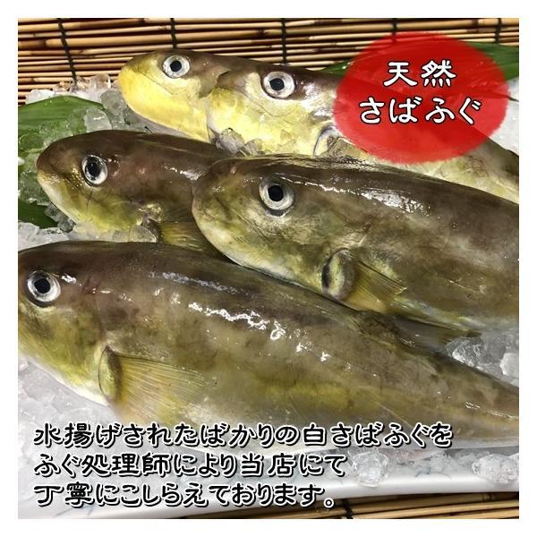 【愛知県産】鍋用天然さばふぐ(3〜4人前)|fugu|04