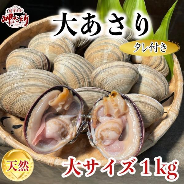 活大あさり(大アサリ)大サイズ 1kg ひと口では食べられない大あさり 【愛知県産】