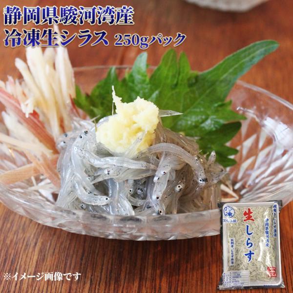 静岡県 駿河湾産 冷凍 生シラス 250gパック しらす 国産 するがわん こくさん お刺身 さしみ 生食 寿司 軍艦 おつまみ 海鮮丼