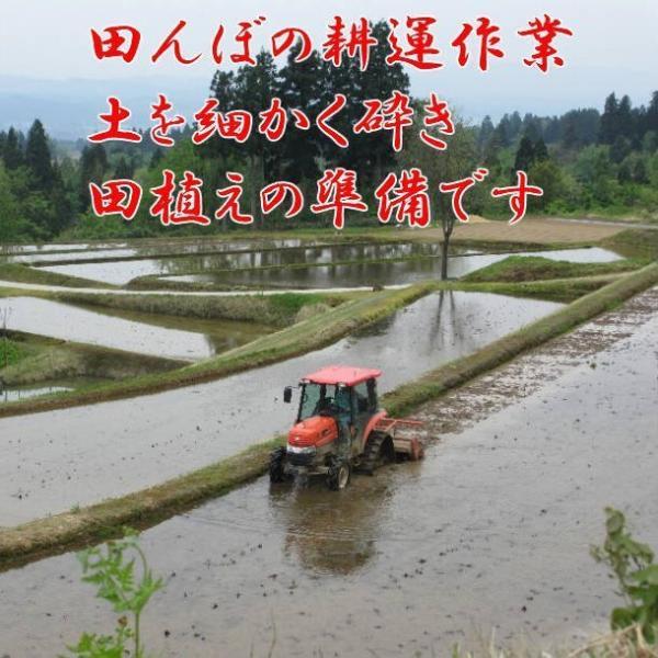 米 お米 5kg 令和2年産 新米 コシヒカリ 魚沼産 贈答用 新潟県 白米 送料無料|fujimakisanchi|04