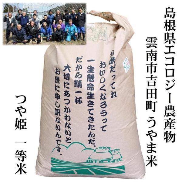 【玄米30kg】令和2年産 島根県吉田町エコ米『うやま米』つや姫 玄米30kg 【1等米】【島根県エコロジー農産物認定】