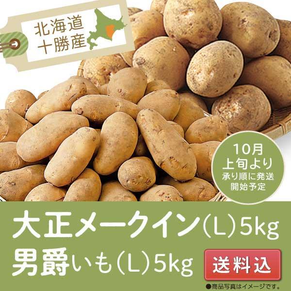 じゃがいも メークイン 男爵 北海道十勝産 送料込 大正メークイン 詰合せ 計10kg