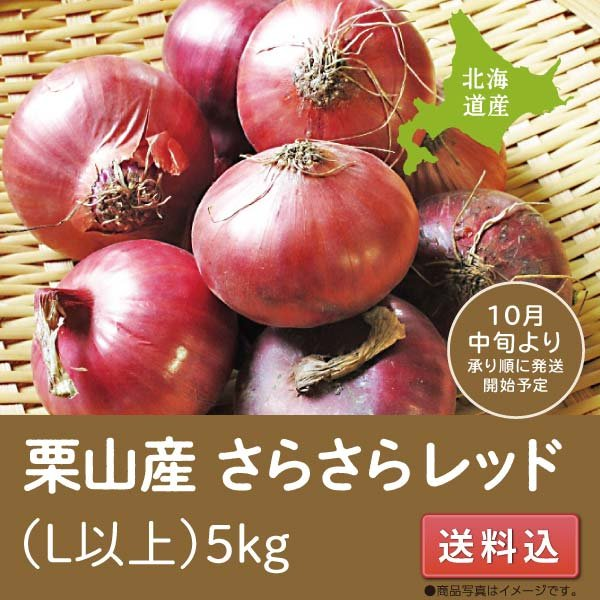 玉ねぎ 送料込 北海道栗山産 さらさらレッド 5kg