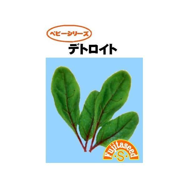 野菜 タネ 種 デトロイト 藤田種子|fujitaseed