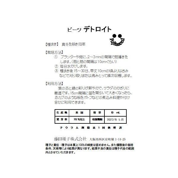 野菜 タネ 種 デトロイト 藤田種子|fujitaseed|02