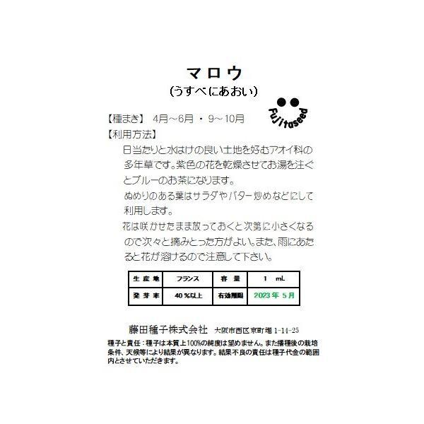 ハーブ タネ 種 マロウ(ウスベニアオイ)(マロー) 藤田種子|fujitaseed|02