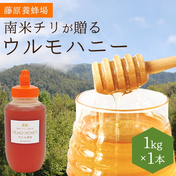 外国産はちみつ ウルモハニー 南米チリ産蜂蜜 南米のマヌカハニーと呼ばれています 1KG(1000g) ポリ容器入り 創業百二十余年藤原養蜂場