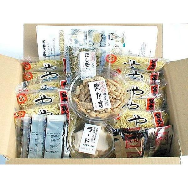 富士宮焼きそばソース&塩だれ10人前セット(やきそばレシピ付き)やきそば 冷凍食品