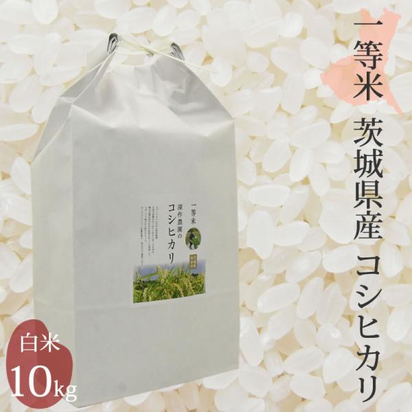 米 お米  白米  2020 コシヒカリ 10kg 10キロ こしひかり