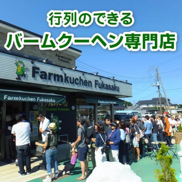 バウムクーヘン バームクーヘン  ギフト 内祝い メロンバームプレミアム|fukasakunouen|07