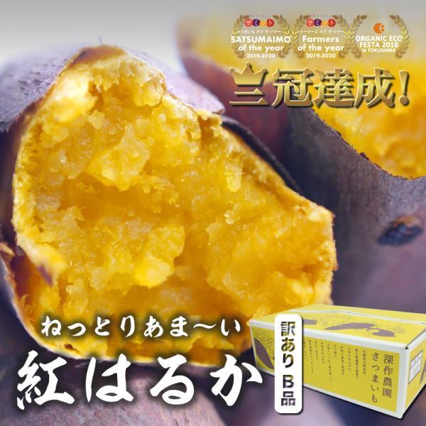 さつまいも 訳あり 紅はるか 5kg サツマイモ 蜜芋 ワケあり B品