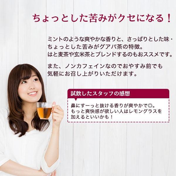 グアバ茶 グァバ茶 ノンカフェイン 国産 茶 健康茶 送料無料 ティーバッグ 50包 ふくちゃ 福茶|fukucha|03