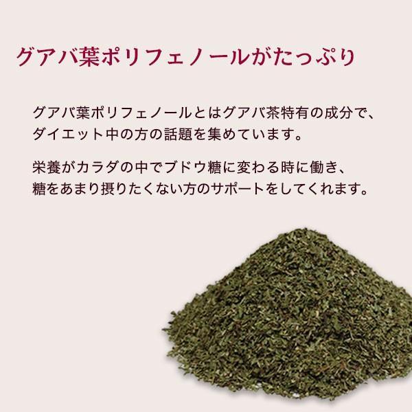 グアバ茶 グァバ茶 ノンカフェイン 国産 茶 健康茶 送料無料 ティーバッグ 50包 ふくちゃ 福茶|fukucha|04