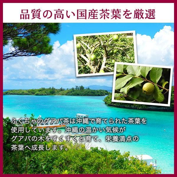 グアバ茶 グァバ茶 ノンカフェイン 国産 茶 健康茶 送料無料 ティーバッグ 50包 ふくちゃ 福茶|fukucha|05