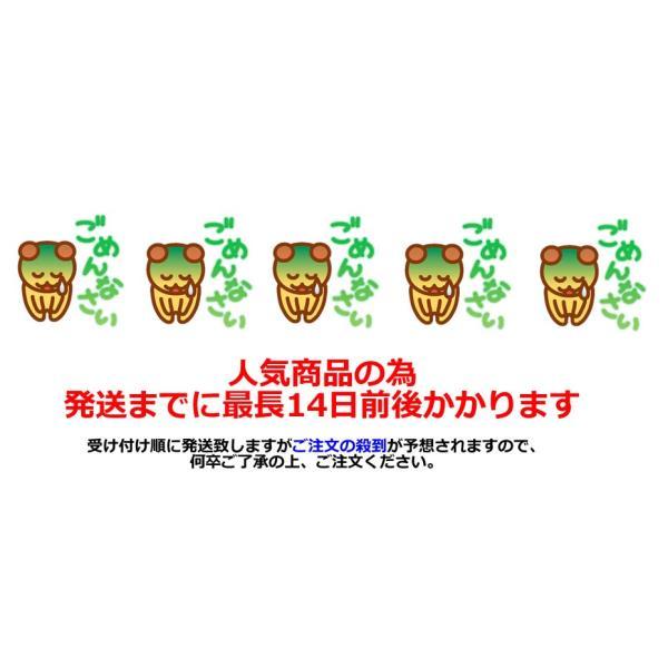 玉ねぎ皮茶 たまねぎ皮茶 タマネギ皮茶 玉ねぎの皮茶 たまねぎの皮茶 国産 茶 健康茶 送料無料 ノンカフェイン ティーバッグ 50包 ふくちゃ 福茶|fukucha|06