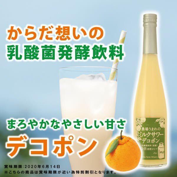 フルーツ ジュース 乳酸菌飲料 デコポン 不知火みかん 果汁入り 500ml 5倍希釈|fukuda-farm