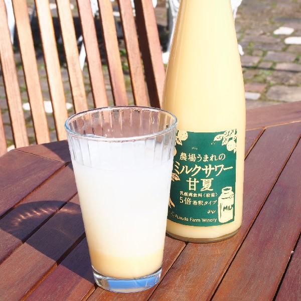 フルーツ ジュース 乳酸菌飲料 甘夏 500ml 5倍希釈 fukuda-farm 02