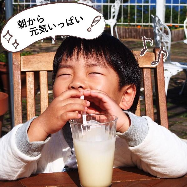 フルーツ ジュース 乳酸菌飲料 甘夏 500ml 5倍希釈 fukuda-farm 03