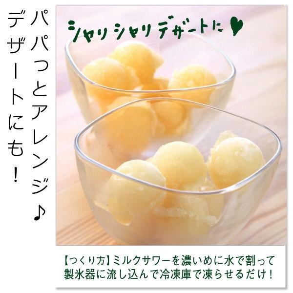 フルーツ ジュース 乳酸菌飲料 熊本晩柑 みかん 果汁入り 500ml 5倍希釈|fukuda-farm|05