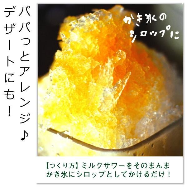 フルーツ ジュース 乳酸菌飲料 熊本晩柑 みかん 果汁入り 500ml 5倍希釈|fukuda-farm|06