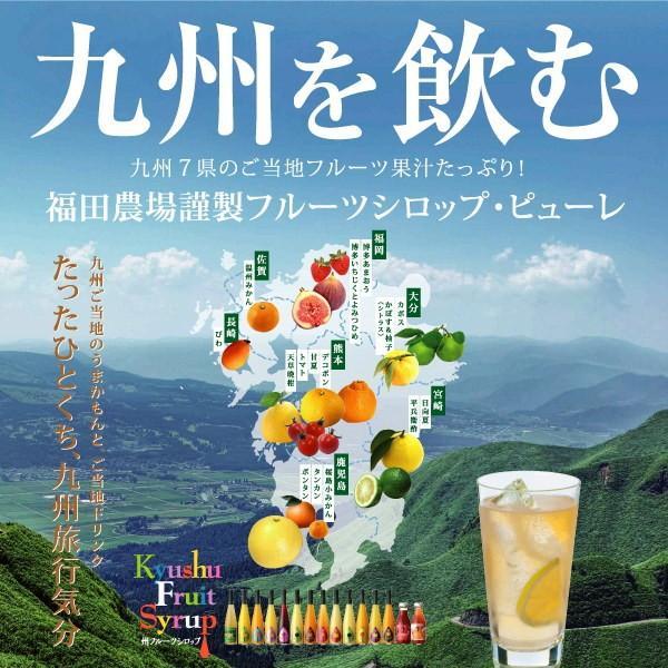 シロップ ザ・シトラス かぼす 柚子  3倍希釈 500ml|fukuda-farm|03