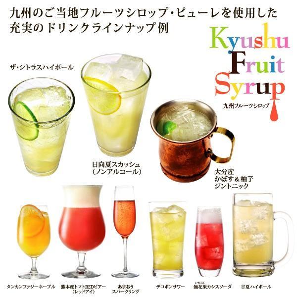 シロップ ザ・シトラス かぼす 柚子  3倍希釈 500ml|fukuda-farm|05
