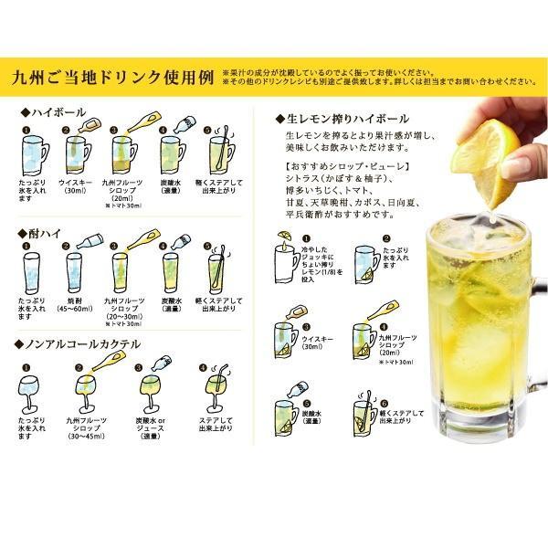 シロップ ザ・シトラス かぼす 柚子  3倍希釈 500ml|fukuda-farm|06