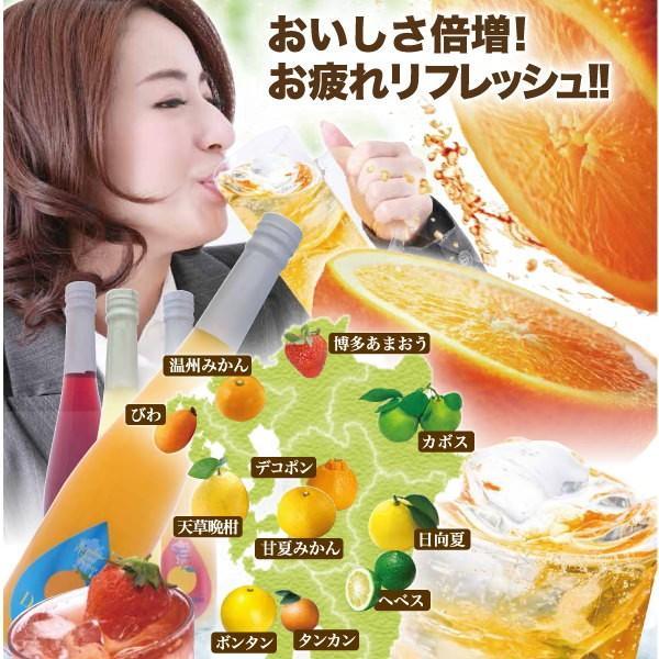シロップ ザ・シトラス かぼす 柚子  3倍希釈 500ml|fukuda-farm|07