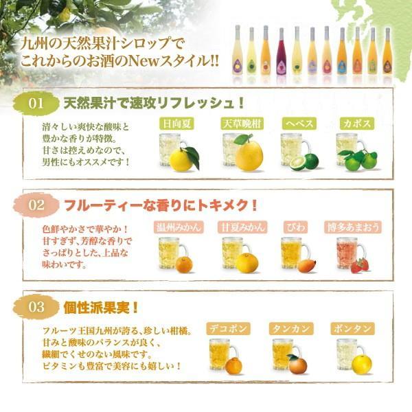 シロップ ザ・シトラス かぼす 柚子  3倍希釈 500ml|fukuda-farm|08
