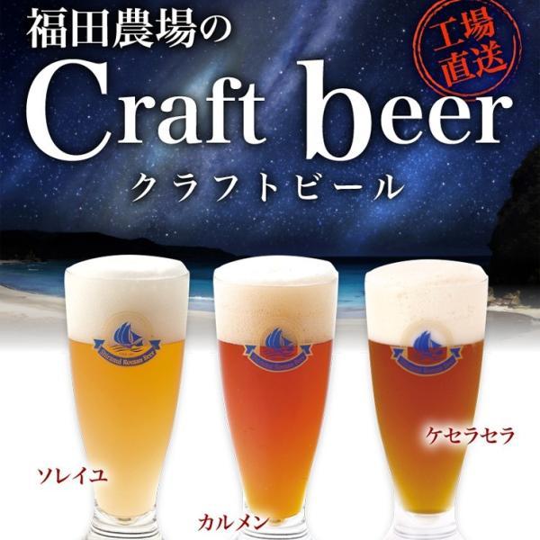 ギフト ビール ランキング クラフトビール 3種 不知火海浪漫麦酒 馬肉 おつまみセット クール便|fukuda-farm|06