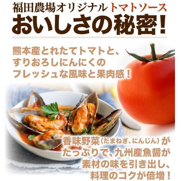 万能 トマトソース 手作り ランキング ガーリック トマト 無添加 熊本 国産|fukuda-farm|03