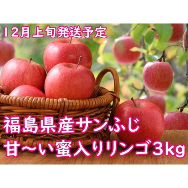【予約受付12月上旬発送予定】甘〜い蜜入りりんご【福島県産サンふじ贈答用】3kg(8〜9個)【送料無料】