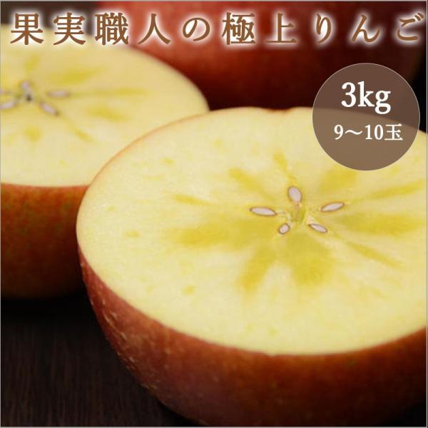果実職人の極上サンフジ 3kg(9-10玉)|fukufuru