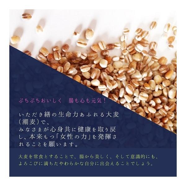 雑穀米700g 雑穀 お試し雑穀米 ご飯 元精穀 10穀米|fukui-koshino|02