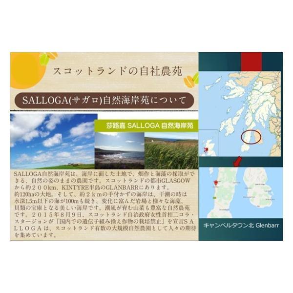 雑穀米700g 雑穀 お試し雑穀米 ご飯 元精穀 10穀米|fukui-koshino|06
