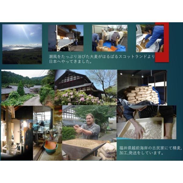 雑穀米700g 雑穀 お試し雑穀米 ご飯 元精穀 10穀米|fukui-koshino|07