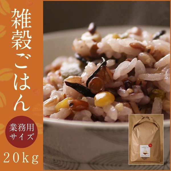 元精穀21kg(3.5kg×6個) 雑穀 雑穀米 ご飯 元精穀 10穀米 fukui-koshino