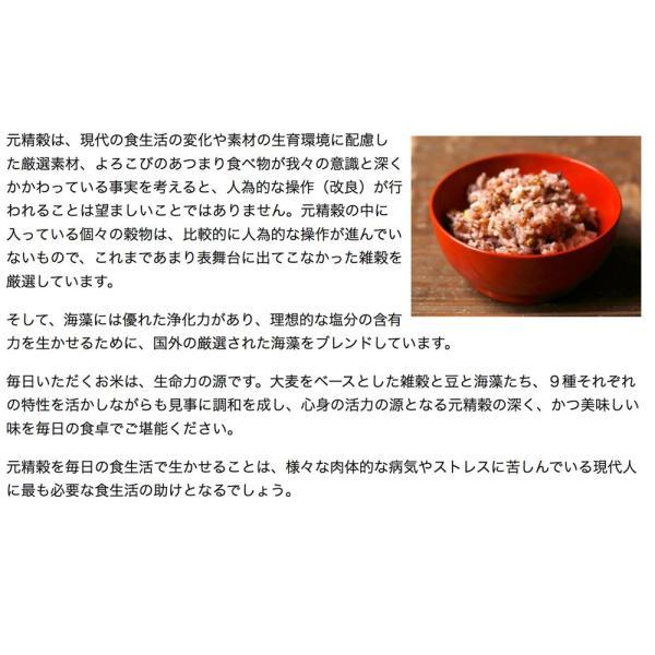 元精穀21kg(3.5kg×6個) 雑穀 雑穀米 ご飯 元精穀 10穀米 fukui-koshino 11
