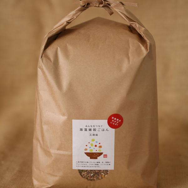 元精穀21kg(3.5kg×6個) 雑穀 雑穀米 ご飯 元精穀 10穀米 fukui-koshino 13