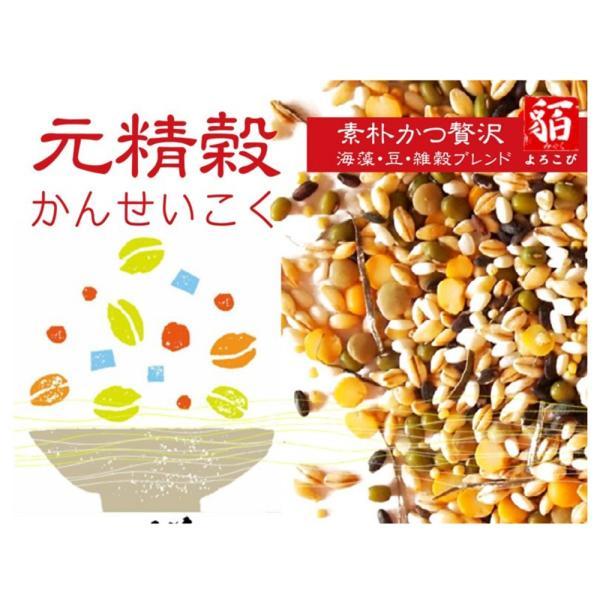 元精穀21kg(3.5kg×6個) 雑穀 雑穀米 ご飯 元精穀 10穀米 fukui-koshino 08