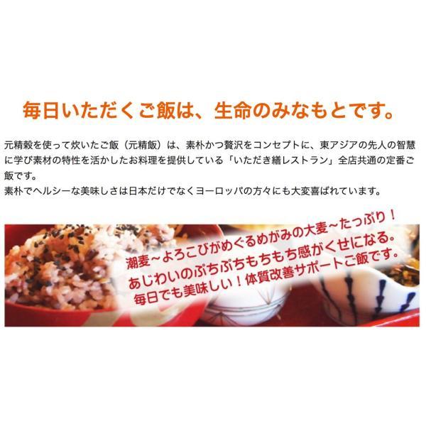 元精穀21kg(3.5kg×6個) 雑穀 雑穀米 ご飯 元精穀 10穀米 fukui-koshino 09