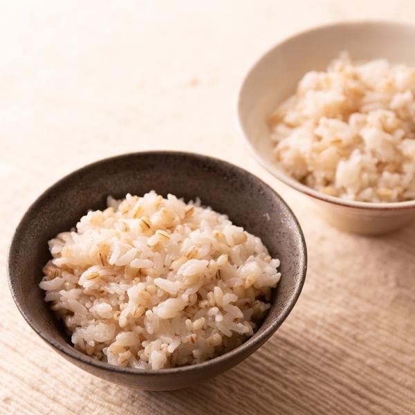 自社農園スコットランド産大麦700g潮麦 丸麦 麦ご飯 デトックス お菓子|fukui-koshino|14