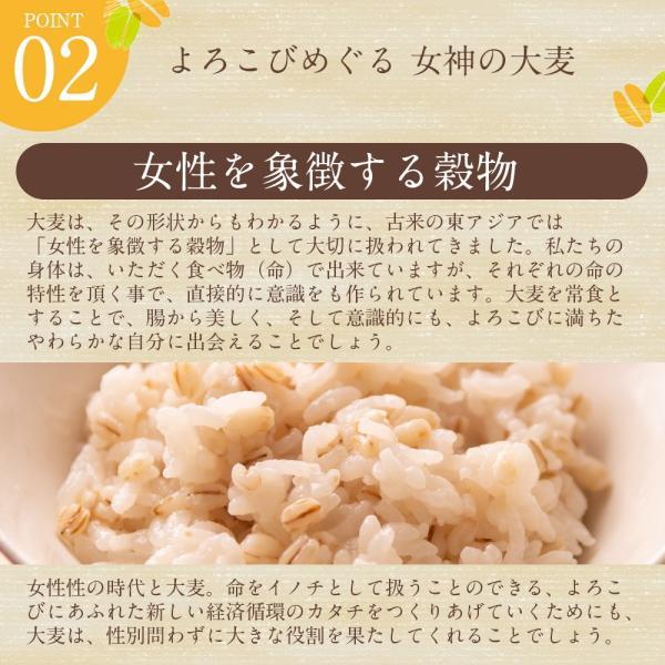 自社農園スコットランド産大麦700g潮麦 丸麦 麦ご飯 デトックス お菓子|fukui-koshino|04