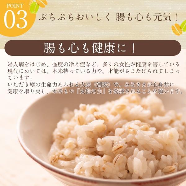 自社農園スコットランド産大麦700g潮麦 丸麦 麦ご飯 デトックス お菓子|fukui-koshino|05
