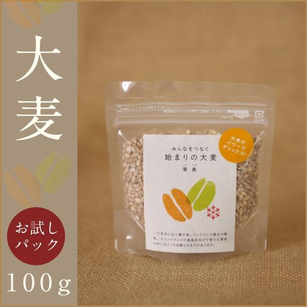 自社農園スコットランド産大麦100g 潮麦 丸麦 麦ご飯 デトックス お菓子|fukui-koshino