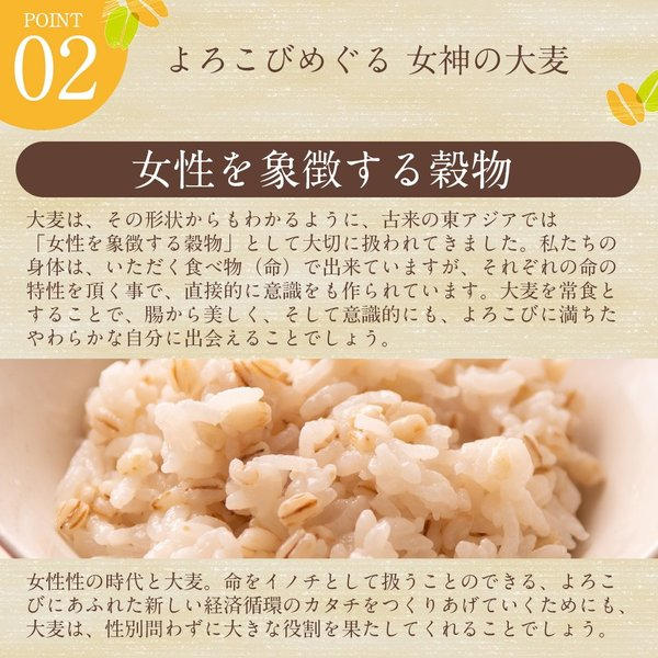 自社農園スコットランド産大麦21kg(3.5kg×6) 潮麦 丸麦 麦ご飯 デトックス お菓子|fukui-koshino|04